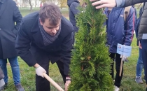 Посадка туй в 75-летний юбилей Победы в Золотухинском районе Курской области